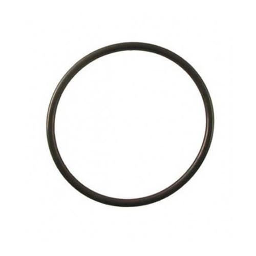 O-ring Deksel Voor Aquaforte Drukfilter PF-10